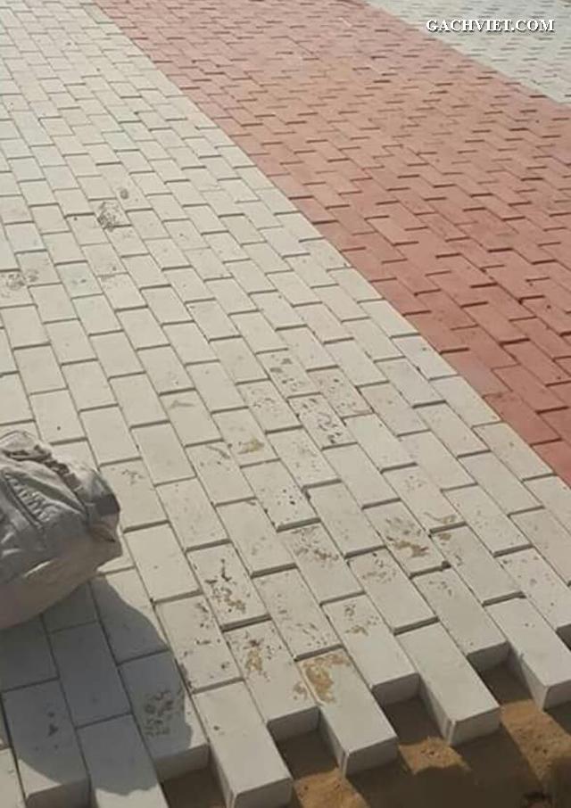 Bán gạch lót sân vườn, gạch lát vỉa hè, gạch ngoài trời, gạch tự chèn, gạch chữ nhật, gạch con sâu, gạch bê tông